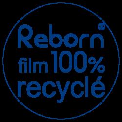 reborn_logo_2